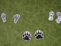сліди-лісових-тварин